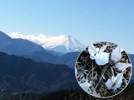 『冬の高尾 小仏城山トレッキング』