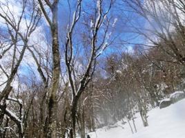 『山歩き講習会-はじめての冬山編- 御在所裏道』